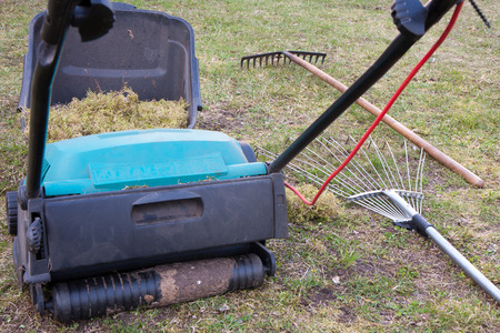 Spring gardening. Raking of dry grass using a special gardening device