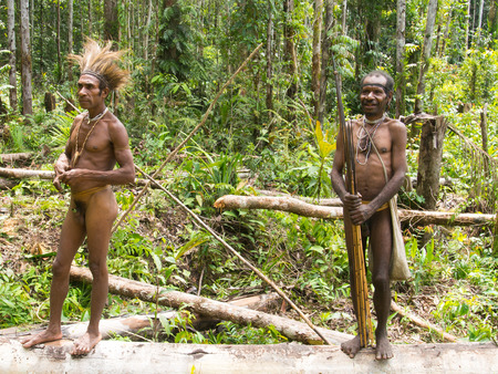 The jungle, Indonesia - January 17, 2015: Residents of a distant jungle in their natural environment. Korowaya tribe. Builders of houses in the trees. Editorial
