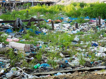 bother: Dekaii, Indonesia - January 21, 2015: A huge trash dump in the village centre does not bother anyone.
