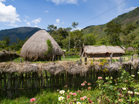 dani: Wamena, Indonesia - January 23, 2015: Cottage covered with dry leaves of banana in the Dani tribe village.
