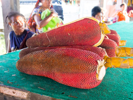 Dekai, Indonesia - January 21, 2015: Red fruit Buah Merah Papua. Miraculous cure for all diseases of the civilized world.