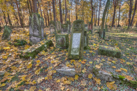 jewish town: Otwock, Poland - October 28, 2015:  Devastated Jewish cemetary in Otwock town