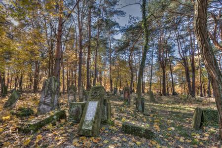 unmarked: Otwock, Poland - October 28, 2015:  Devastated Jewish cemetary in Otwock town