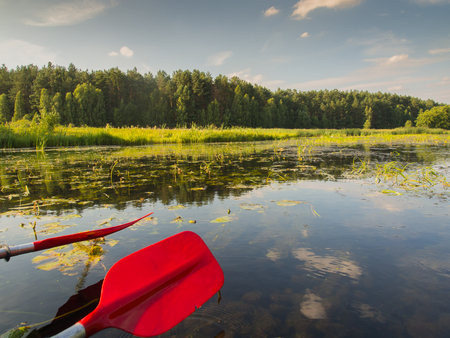 canoeist: Red canoeing paddles on a background of a beautiful Polish nature