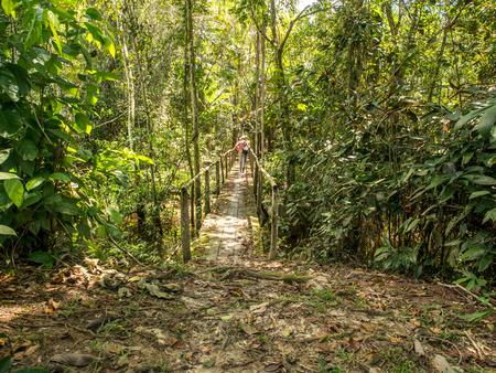 Palmari, Brazil - May 6, 2016: Tourist on a narrowbridge in the amazons jungle