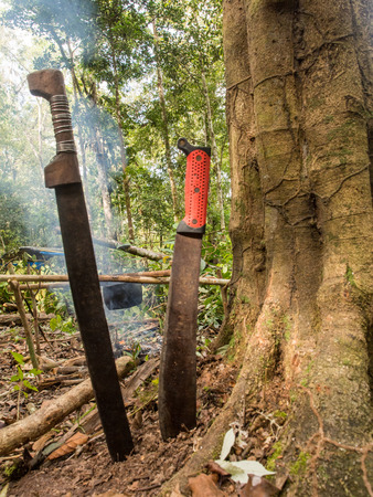 indent: Machety. The main tool used by the Indians in the jungle. Stock Photo