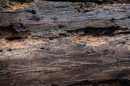 Background. Rustic wooden planks with visible grain Stock Photo