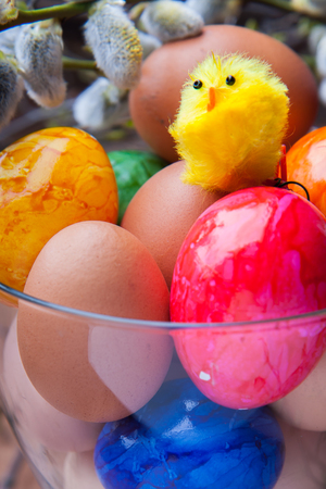 ovule: Coloured eggs, base and yellow chicken toy-  the symbol of Easter Stock Photo