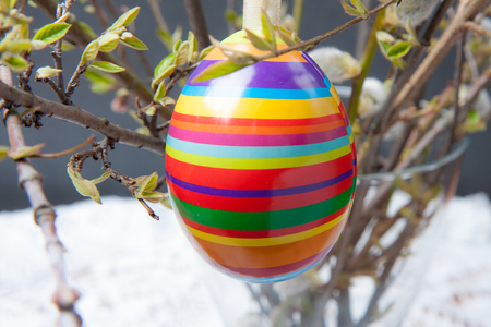 Colourful Easter eggs hanging on a bush