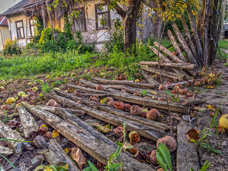 Wolka Zamkowa, Poland - August 14, 2016: Destroyed, wooden fence next to an  abandoned farmhouse Editorial