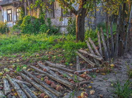Destroyed, wooden fence next to an abandoned farmhouse