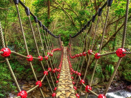 Rope bridge over a  river in the  Moakong hills.