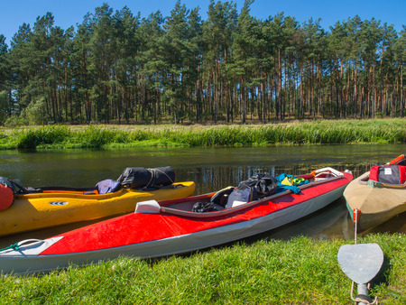 Paddles and  kayaks  on a  bank of a river Wda