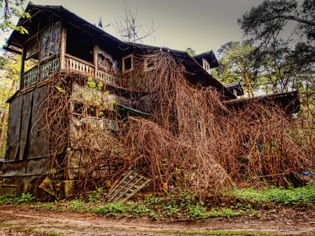 Old wooden house almost completely overgrown Stock Photo