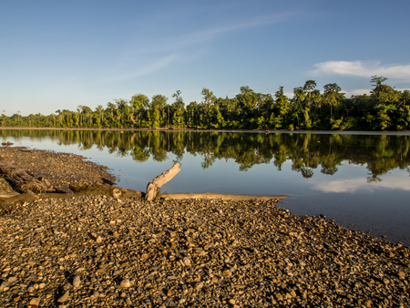 Brazza River flowing through the rain forest of the Indonesian jungle in Papua