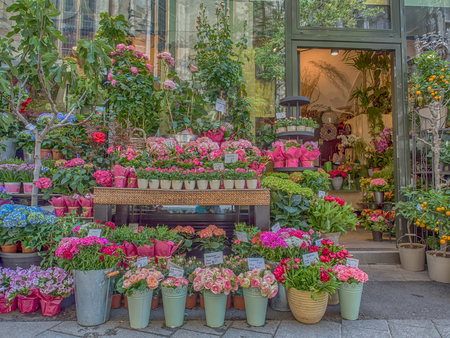 Vienna, Austria - May 23, 2017: Flower Shop on a Stephansplatz street in Vienna Editorial