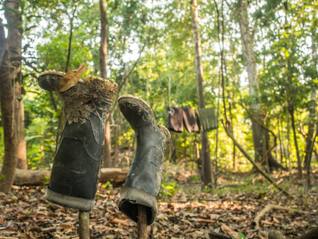 Wellingtons shoes on the wooden sticks. Summer time in the jungle. Amazon.