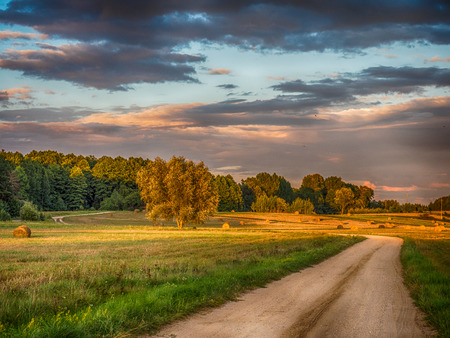 A countryside road. Podlasie. Podlachia. Poland, Europe. The region is called Podlasko or Podlasze. Panoramic view.
