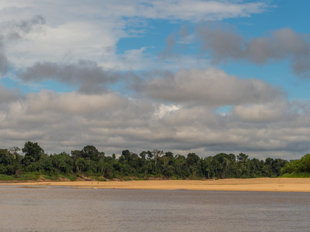 Beautiful sandy beach in Amazon jungle, during the low water season. Amazonia. Selva on the border of Brazil and Peru. South America. Dos Fronteras.