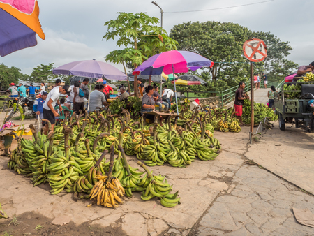 Leticia, Colombia - March 24, 2018: Huge number of different kinds local bananas at the bazaar on the Amazon River. Latin America. Editorial