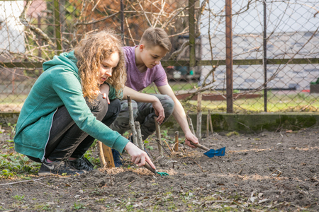 Two young people working during spring time in the garden