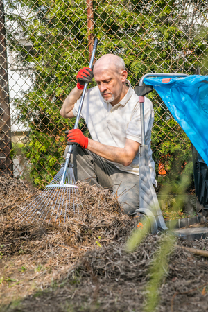 Mature man with a small beard during spring cleaning in the garden