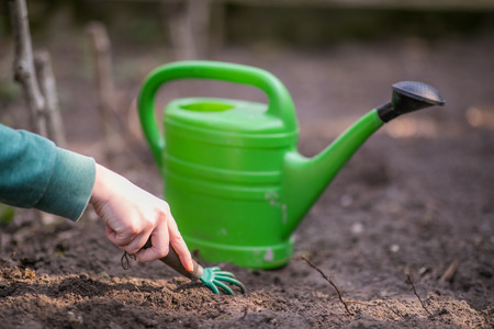 Hand of young woman is digging in the patch during springtime in the garden. Green watering can in the background