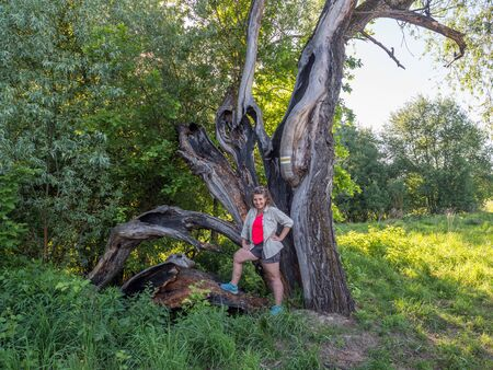 Woman on  huge, cracked tree trunk on the yellow trail that runs along the Vistula River. Natura 2000 areas. The Åšwiderskie Island Reserve. Poland.