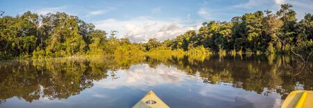Amazonia. Panoramic, sunset view seen from the kayak. Coati Lagoon near the Javari River, the tributary of the Amazon River. Selva on the border of Brazil and Peru. South America.