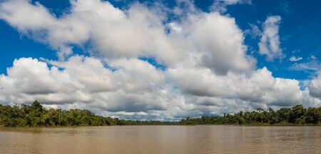 Panoramic view of Coati Lagoon near the Javari River, the tributary of the Amazon River, Amazonia. Selva on the border of Brazil and Peru. South America.