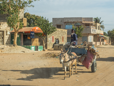 Nianing, Senegal - January 24, 2019: Man is riding donkey cart on  the senegalese road. It is a popular transportation way in Africa Sajtókép