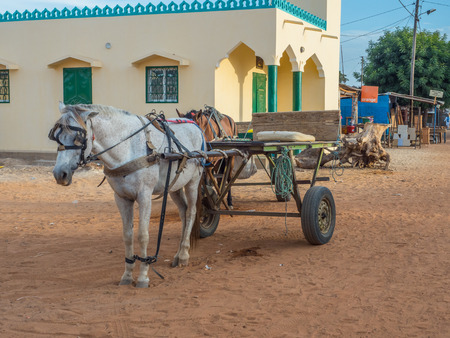 Nianing, Senegal - January 24, 2019: Cart with white horse waiting on the senegalese, local road, a popular transportation way in Africa