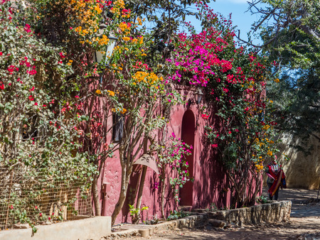 Goree, Senegal- February 2, 2019:  Red house with  plenty of colorful flowers on the Goree island. Gorée. Dakar, Senegal. Africa.