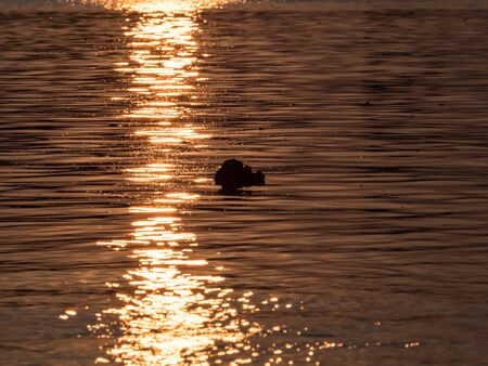 A ray of the setting sun is reflected in the flowing river. The Vistula River, Warsaw, Poland, Eastern Europe