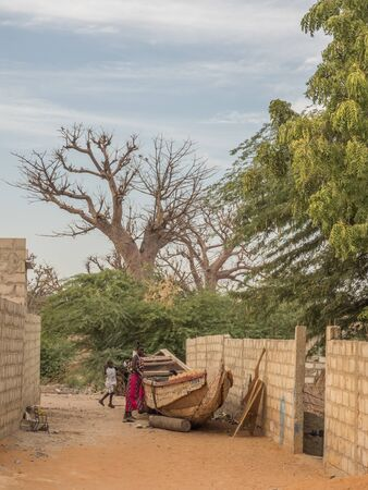Senegal, Africa - January, 24, 2019:  A huge baobab trees next to the red african road.Tree of happiness, Senegal. Africa.