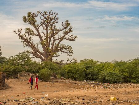 Senegal, Africa - January, 24, 2019: Baobab tree next to the local african road and the two men walking in the red clothes between the pollution. Senegal. Africa.