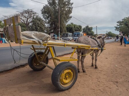 Nianing, Senegal - January 24, 2019: Donkey cart on  the senegalese road, a popular transportation way in Africa