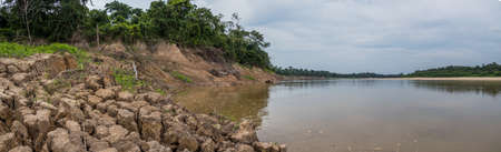 Bank of the Javari River, the tributary of the Amazon River, during the low water season. Amazonia. Selva on the border of Brazil and Peru. South America.