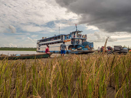 Amazon River, Peru - December 04, 2018: Cargo boat and the workers collecting the bags with rice. Rice fields on the island on the Amazon River during the low water season. South America Editorial