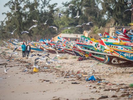 Senegal, Africa - January 26, 2019: Seagulls flying over the beach with plenty of waste. Pollution concept. Colorful fisher boats in the background. Senegal. Africa. Publikacyjne