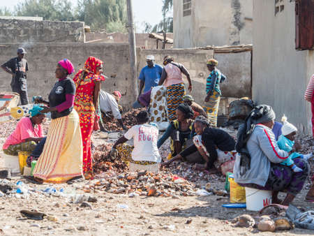 Senegal, Africa - January 25, 2019: African women working on sorting caught fish and other sea creatures 新闻类图片