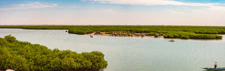 Panoramic view of mangroves and granaries in the shells island. City of Joal-Fadiouth, Thiès region at the end of the Petite Côte of Senegal. africa Banque d'images