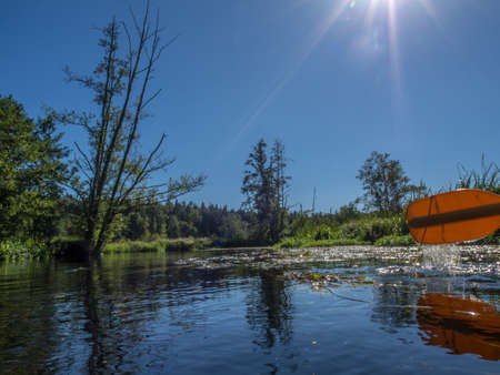 Paddles and their reflection in the river, Czarna Woda, Wda, Pomeranian Voivodeship, Bory Tucholskie,