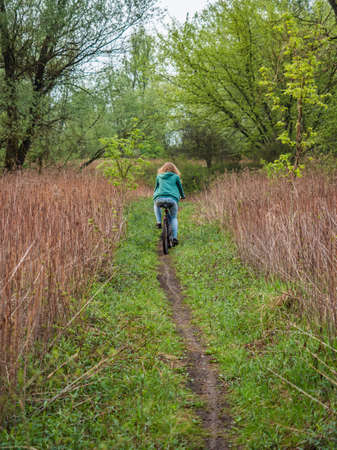 A woman on a bicycle on the road in Świderskie Island Reserve. Mazovia Province. Poland, Europe. 免版税图像