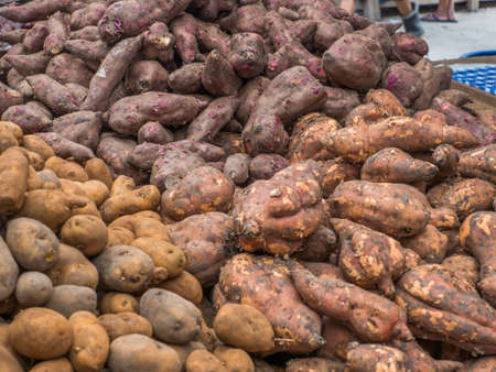 Different types of potatoes at the Belen (Belén market) bazaar, Iquitos city on the banks of the Amazon River, gate to the rainforest, Amazonia, Loreto, Peru, South America