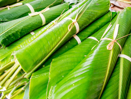 Green banana leaves used for wrapping food at the market in Belen (Belén market), the city of Iquitos on the banks of the Amazon, gate to the rainforest, Amazon, Loreto, Peru, South America