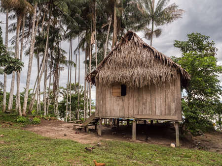 Paumari, Peru - Nov 29, 2018: Wooden house with a roof made out of palm leaves in a small village in the Amazon jungle, South America. Yavarii river basin tributary of the Amazon River.