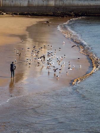 Sandy beach, seagulls and tourist during sunrise in Cascais, Portugal