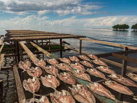 The fish dries on specially prepared nets at the Seram Sea in Kaimana, fishing.