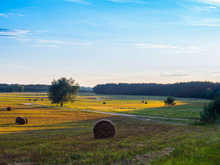 A countryside road during spring time. Podlasie. Podlachia. Poland, Europe. The region is called Podlasko or Podlasze.